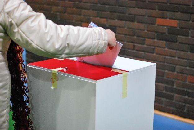 Pijana członkini komisji, karty do głosowania 5 zł i wadliwe formularze - Aktualności Podkarpacie