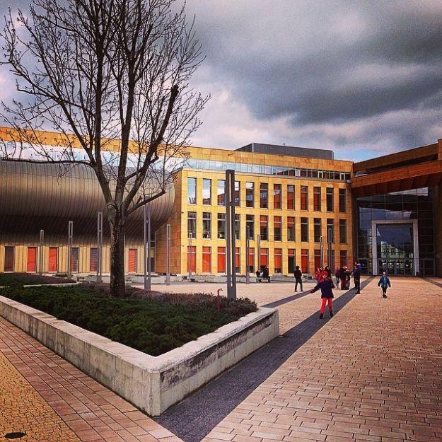 Nowy kierunek studiów w ofercie UR - Aktualności Rzeszów