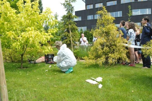 FOTO. Znaleźli ciało w ogrodach WSPiA. Przeprowadzono oględziny miejsca zabójstwa   - Aktualności Rzeszów