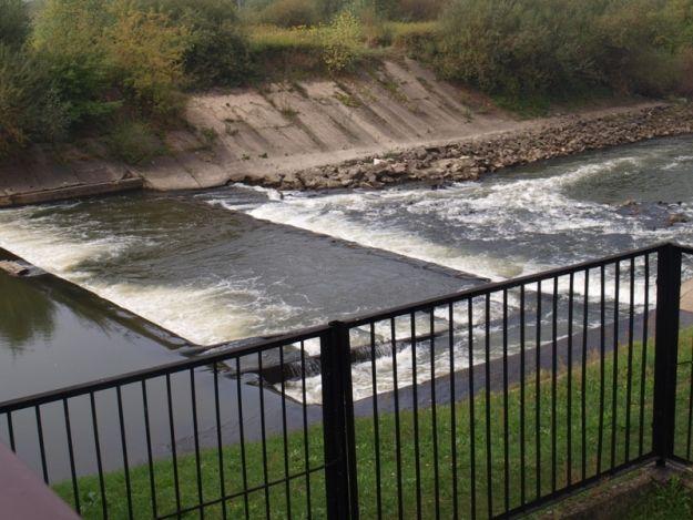 Będzie remont umocnienia prawego brzegu Wisłoki. W planie udostępnienie rzeki migrującym rybom - Aktualności Podkarpacie