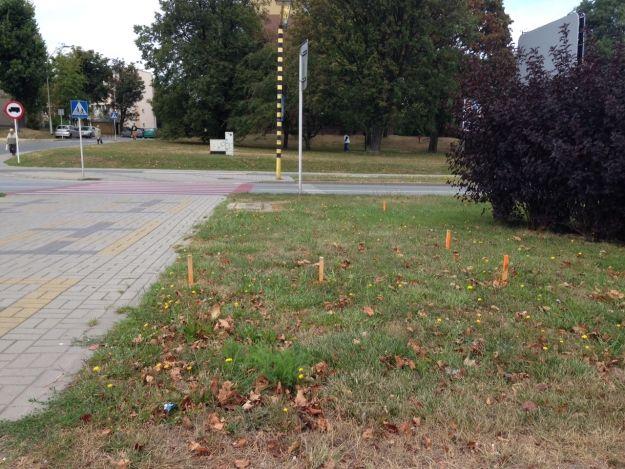 Pomarańczowe słupki na ulicach Rzeszowa. Co oznaczają? - Aktualności Rzeszów