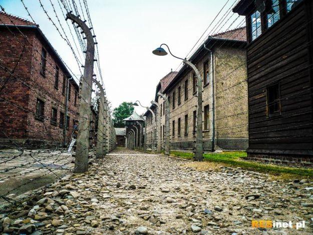 Dzień Pamięci o Ofiarach Holokaustu w Rzeszowie. (PROGRAM) - Aktualności Rzeszów
