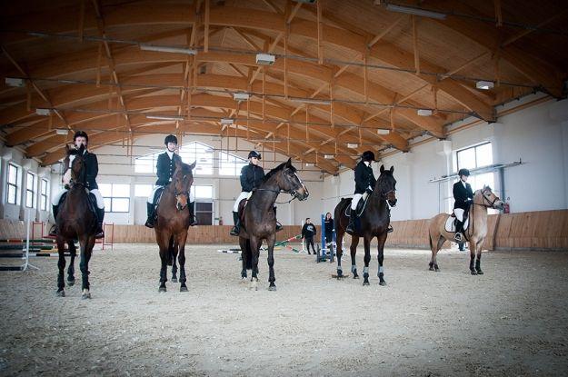 Pod Rzeszowem otwarto ujeżdżalnię dla koni - Aktualności Rzeszów