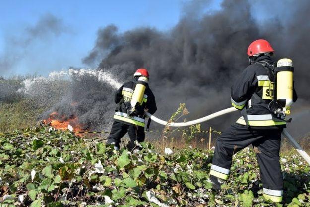 Ponad 5700 pożarów na Podkarpaciu. Strażacy apelują do mieszkańców - Aktualności Podkarpacie