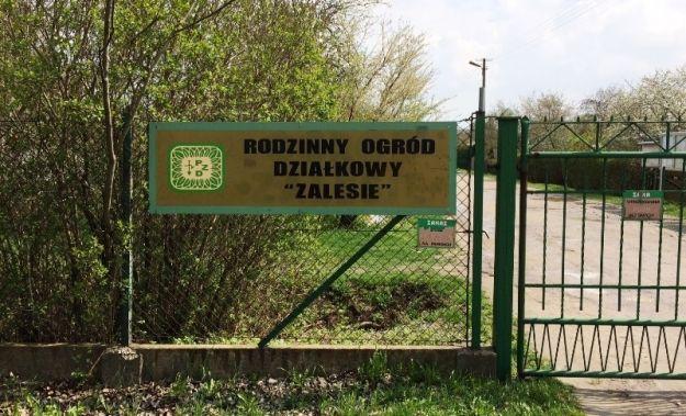 40 zarzutów dla 21-latka, który włamywał się do rzeszowskich altanek - Aktualności Rzeszów