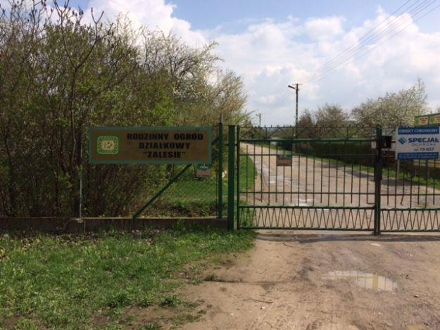Seria włamań do altanek na rzeszowskich ogródkach działkowych. Sprawca złapany w Parku Papieskim - Aktualności Rzeszów