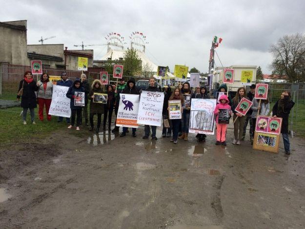 """""""Dzień Cyrku bez Zwierząt"""" – flashmob na Rynku w Rzeszowie - Aktualności Rzeszów"""