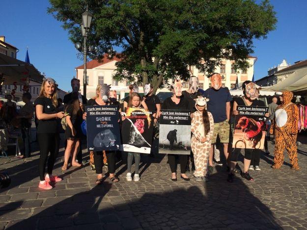 FOTO. Dzień Cyrku Bez Zwierząt w Rzeszowie. Flashmob na Rynku - Aktualności Rzeszów