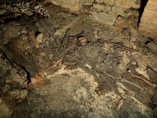 Archeolodzy odnaleźli ludzkie szczątki pod bazyliką Bernardynów - Aktualności Rzeszów