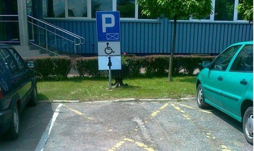 Parkingi dla ciężarnych - Aktualności Rzeszów