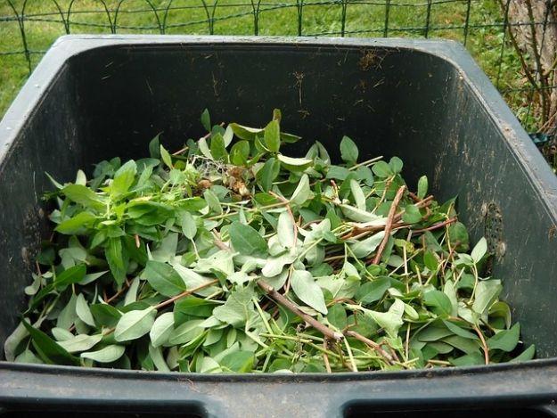 Zmiany w regulaminie odbioru śmieci w Rzeszowie. Będzie dodatkowa frakcja  - Aktualności Rzeszów