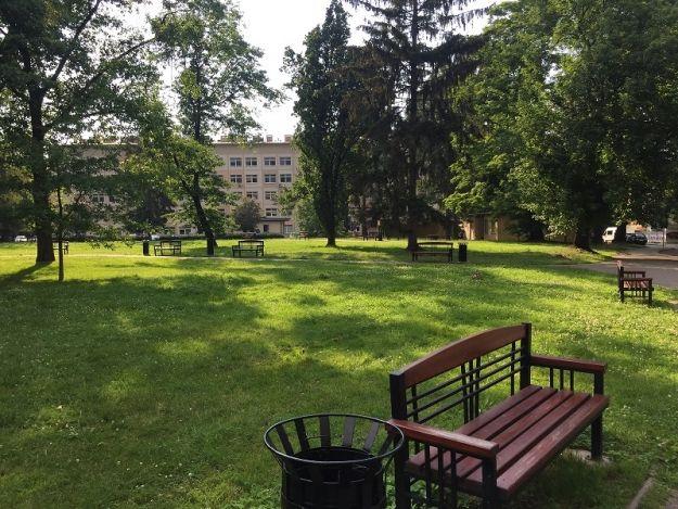 Miasto zmodernizuje park przy ul. Rycerskiej. Powstaną dwie fontanny - Aktualności Rzeszów