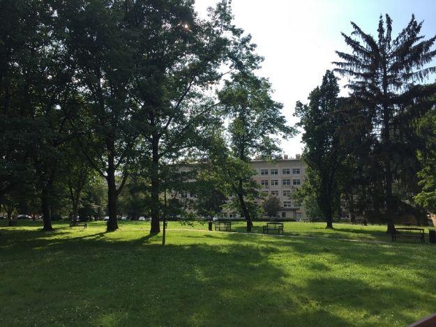 Miasto chce dołożyć 500 tys. zł na renowację parku przy ul. Rycerskiej. O sprawie zdecydują radni  - Aktualności Rzeszów