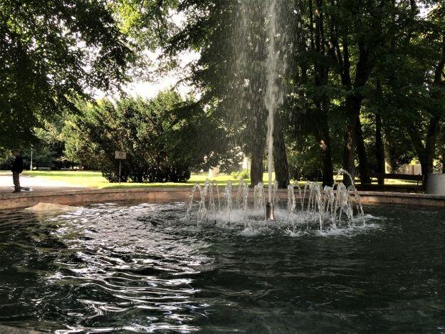 Jest kolejny przetarg na rewitalizację parku przy ul. Dąbrowskiego - Aktualności Rzeszów