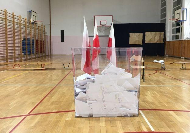 Wyniki wyborów do Sejmu RP. Jak głosowano w Rzeszowie? - Aktualności Rzeszów