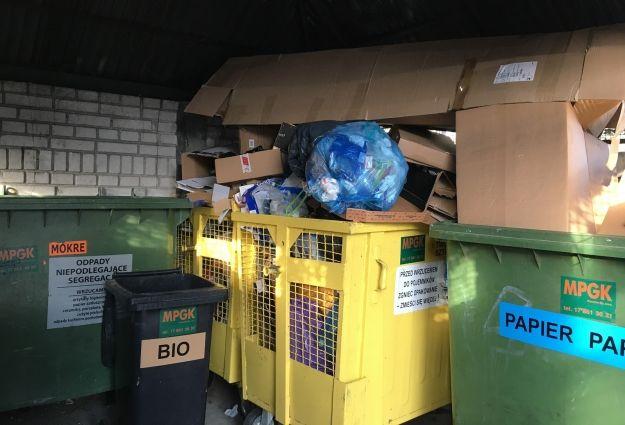 Ceny za odbiór śmieci wzrosną od 1 marca. Radni przyjęli uchwałę - Aktualności Rzeszów