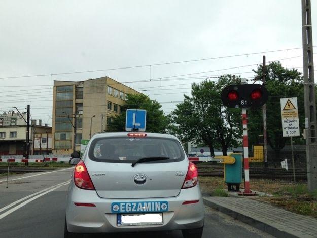 Sprawdź, jak wyglądała w 2019 roku średnia zdawalność egzaminu na prawo jazdy w Rzeszowie - Aktualności Rzeszów