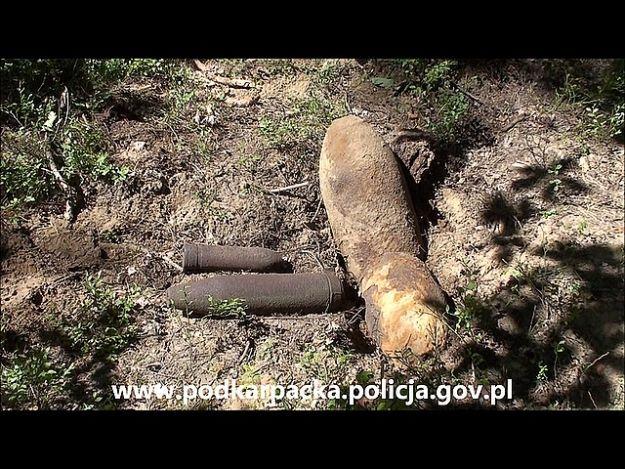 2,5 tony militariów w lasach - Aktualności Podkarpacie