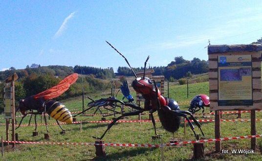 Park owadów w Stobiernej już otwarty  - Aktualności Podkarpacie