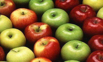 Zdrowa żywność w podkarpackich szkołach  - Aktualności Podkarpacie