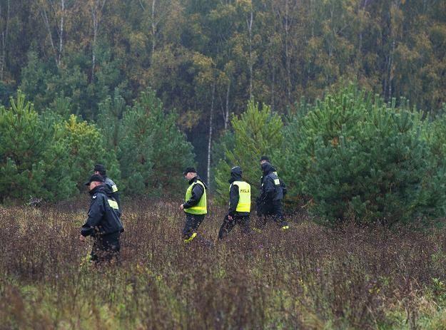 Zgubiły się w lesie - Aktualności Podkarpacie