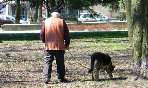 Opłaty za posiadanie psa w Rzeszowie? - Aktualności Rzeszów
