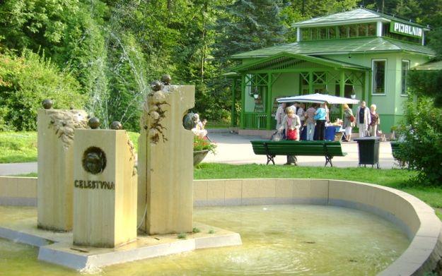 Samorząd województwa chce przejąć Uzdrowisko Rymanów - Aktualności Podkarpacie