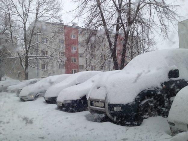 (FOTO) Takiej zimy nie było nawet w zimie - Aktualności Rzeszów