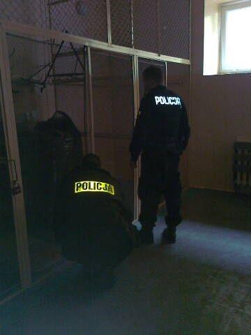 Odpowie za fałszywy alarm bombowy w przemyskim gimnazjum - Aktualności Podkarpacie