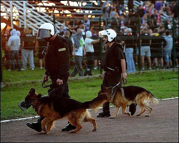 Wyroki dla kibiców po meczu w Przemyślu - Aktualności Podkarpacie
