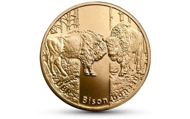 Niezwykłe monety z wizerunkiem żubra - Aktualności Podkarpacie