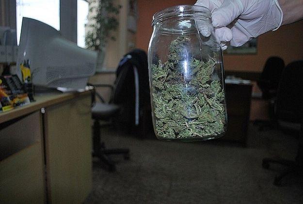 Trzej studenci i słoik marihuany - Aktualności Rzeszów