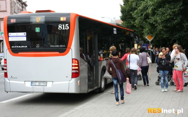 Psy pojadą za darmo autobusem MPK - Aktualności Rzeszów