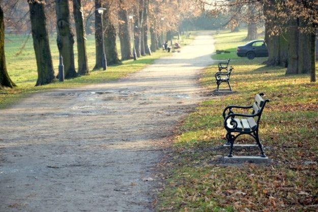Nowe ławki w parku w Łańcucie  - Aktualności Podkarpacie