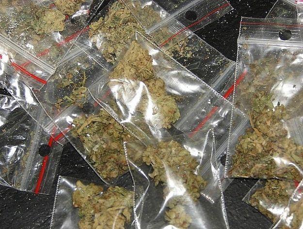 20-latek zatrzymany za posiadanie marihuany - Aktualności Podkarpacie
