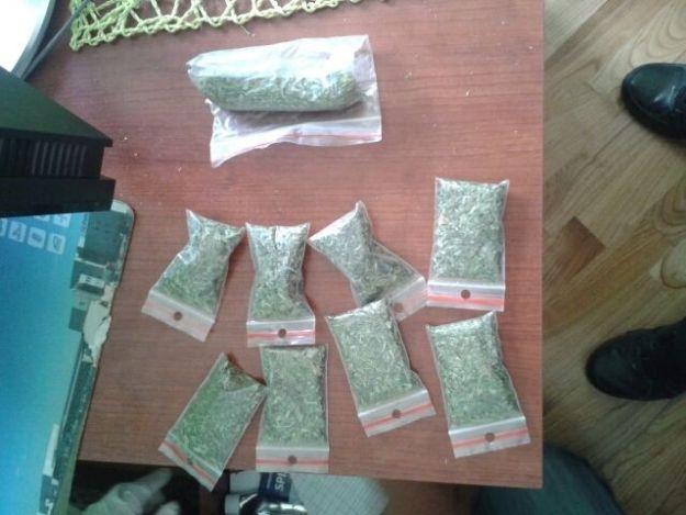 31-latek uprawiał marihuanę - Aktualności Podkarpacie