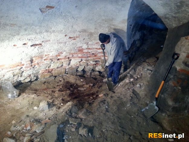 Czyje szczątki odnaleziono w przemyskiej archikatedrze?  - Aktualności Podkarpacie