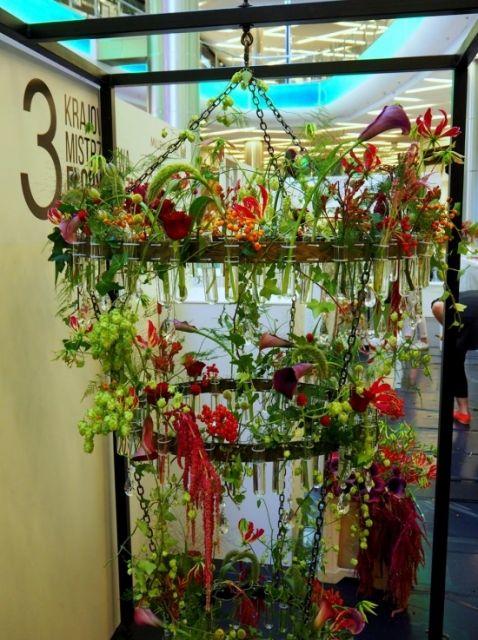 Niesamowite kompozycje z kwiatów do obejrzenia w Millenium Hall (ZDJĘCIA) - Aktualności Rzeszów - zdj. 4