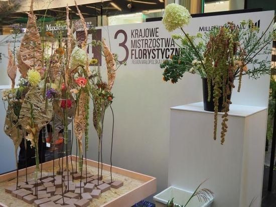 Niesamowite kompozycje z kwiatów do obejrzenia w Millenium Hall (ZDJĘCIA) - Aktualności Rzeszów - zdj. 5