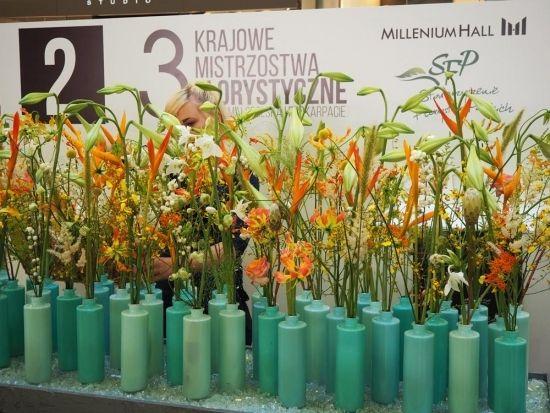 Niesamowite kompozycje z kwiatów do obejrzenia w Millenium Hall (ZDJĘCIA) - Aktualności Rzeszów - zdj. 6