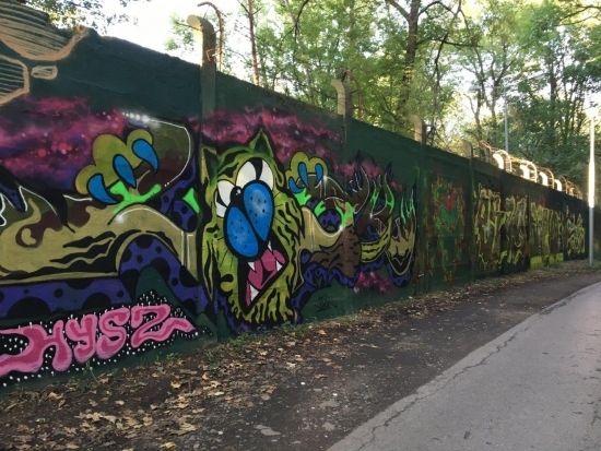Na drodze prowadzącej na Lisią Górę powstało blisko 100-metrowe graffiti [FOTO] - Aktualności Rzeszów - zdj. 2