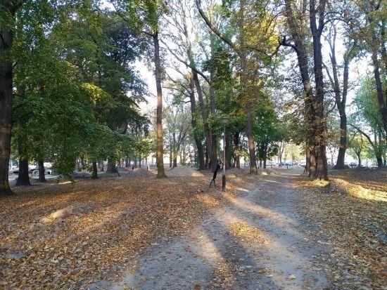 Trwa rewitalizacja parku przy ul. Dąbrowskiego [FOTO] - Aktualności Rzeszów - zdj. 8