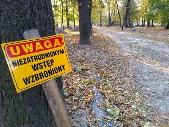 Trwa rewitalizacja parku przy ul. Dąbrowskiego [FOTO] - Aktualności Rzeszów - zdj. 10