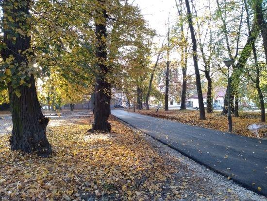 Trwa rewitalizacja parku przy ul. Dąbrowskiego [FOTO] - Aktualności Rzeszów - zdj. 12