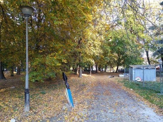 Trwa rewitalizacja parku przy ul. Dąbrowskiego [FOTO] - Aktualności Rzeszów - zdj. 14
