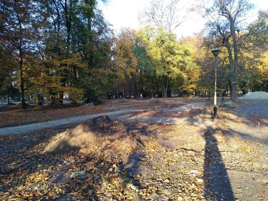 Trwa rewitalizacja parku przy ul. Dąbrowskiego [FOTO] - Aktualności Rzeszów - zdj. 16